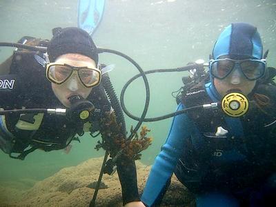 jeunes-plongeuses-400