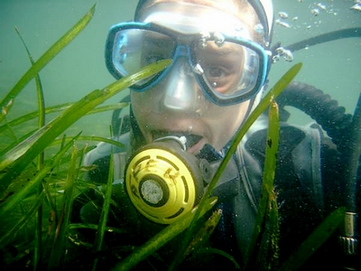 plongeuse-herbier-400