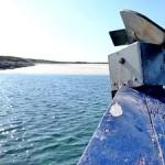 Sorties bateau